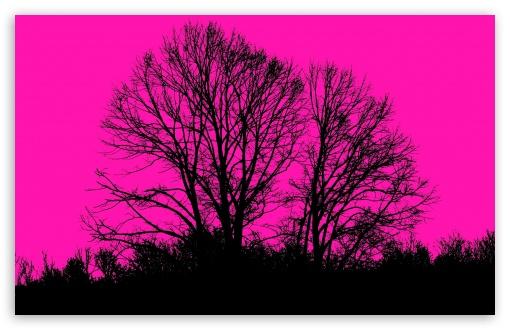 Download Pink UltraHD Wallpaper