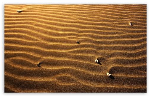 Download Desert Sand UltraHD Wallpaper