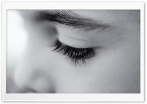 A Kid's Eyes