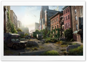 The Last Of US (Video Game)