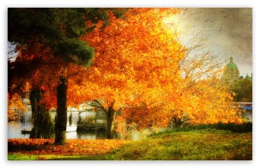 Download A Dreamy Fall UltraHD Wallpaper