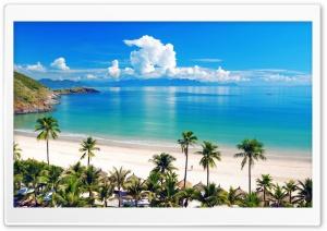 Sea, Beach, Palm.