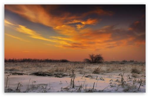 Download Sunset Sky, Winter UltraHD Wallpaper