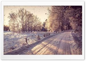 Pathway, Winter