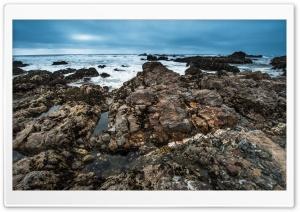 Pescadero State Beach,...