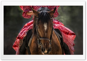 Woman in Red Dress Riding a...