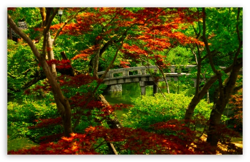Download Japanese Garden (Kyoto) UltraHD Wallpaper