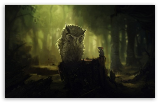 Download The Wise Owl UltraHD Wallpaper
