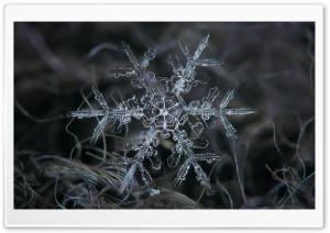 Amazing Real Snowflake Macro