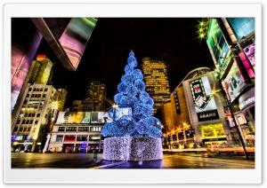 Christmas Tree, City