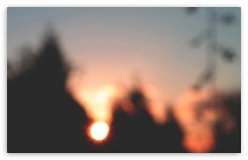 Download Sunset over Trees UltraHD Wallpaper