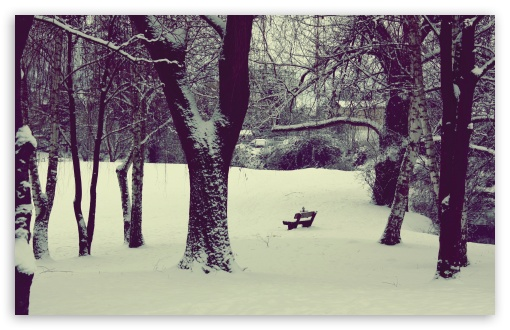 Download Winter Mood UltraHD Wallpaper