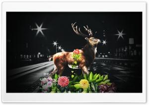 Last Deer  by Pacolix