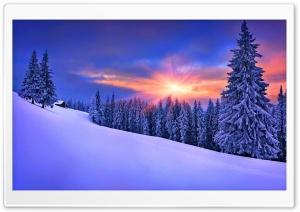 Winter, Nature