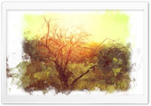 Bushveld Art