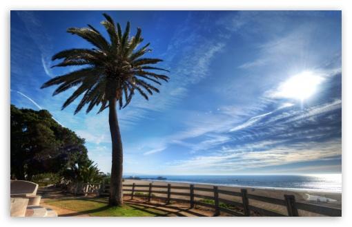 Download Santa Monica Boulevard UltraHD Wallpaper