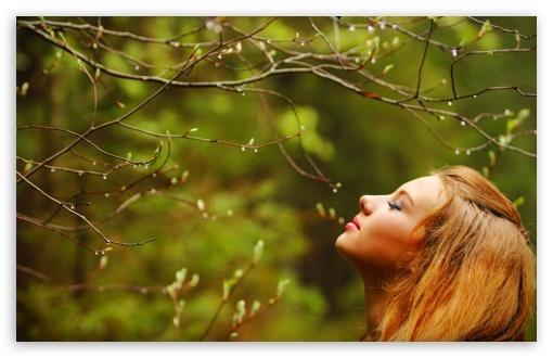 Download Spring Fragrance UltraHD Wallpaper