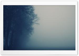Dense Dawn