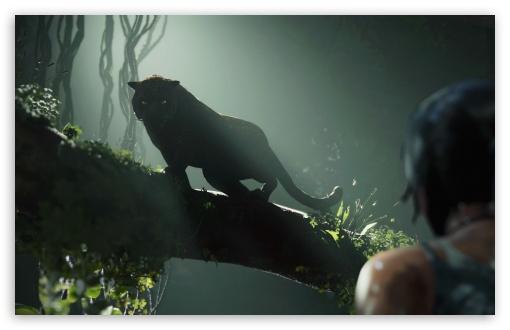 Download Shadow of Tomb Raider UltraHD Wallpaper