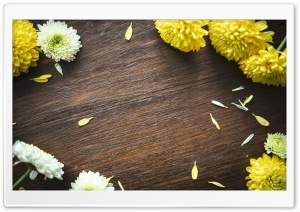 Autumn Mums Flowers Frame, Wood