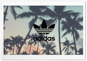Adidas, Palm Trees Background
