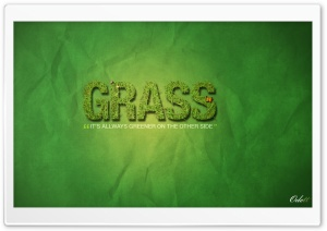 Grass is Always Greener on...