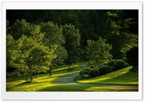 Park, Summer