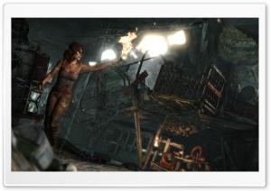 Lara Croft Survivor (2013)