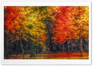Autumn Landscape HDR