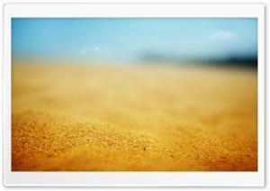 Sand Macro