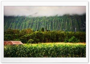 Oahu Highlands