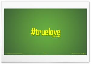 True LOVE_nithinsuren