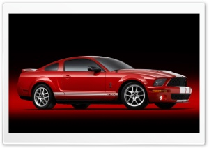 2007 Ford Shelby GT500...