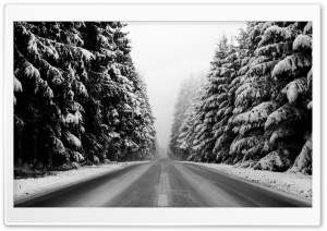 Winter Road Black And White