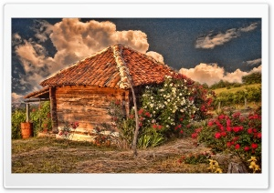 Hut With Roses
