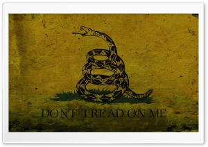 Grunge Don't Tread On Me...
