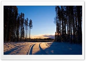 Car Snow Tracks
