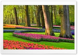 Colorful Spring Gardens,...