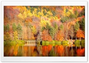 Beautiful Lake Reflection,...