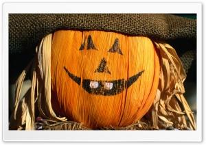Festive Scarecrow