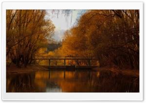 Bridge, Nature, Autumn