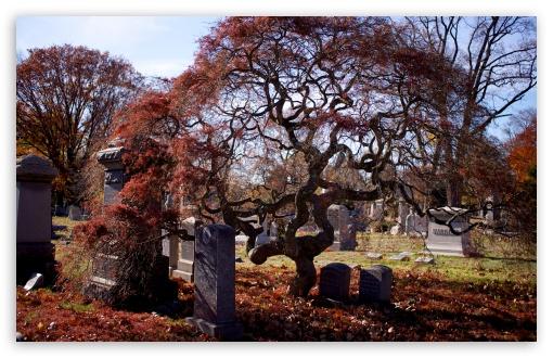 Download Halloween Cemetery UltraHD Wallpaper