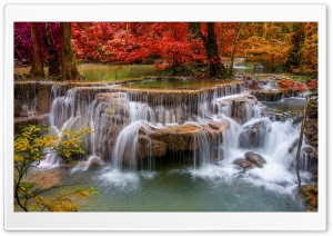 Waterfall, Red Trees