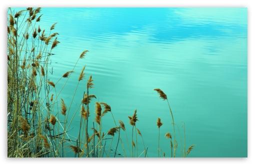Download Lake Reed UltraHD Wallpaper