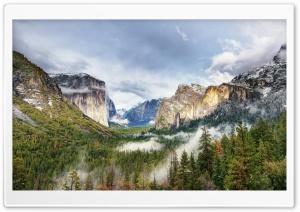 Yosemite National Park Forest...
