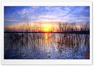 Mercury Pond