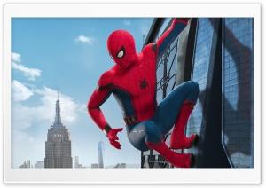 Movie - Spider Man Homecoming