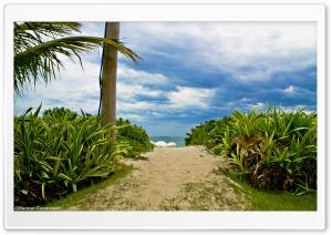 Guaecá Beach