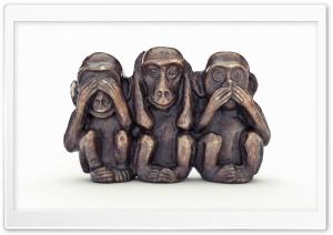 The Monkeys 3D