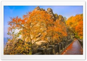 Bastei Bridge, Autumn